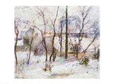 Garden under Snow, 1879 Art Print