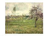 Meadow at Eragny, 1885 Art Print