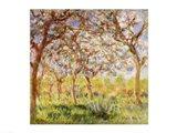 Spring at Giverny Art Print
