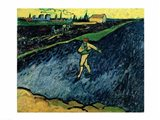 The Sower, 1888 - walking Art Print