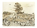 Rocky Ground at Montmajour Art Print