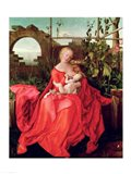 Virgin and Child 'Madonna with the Iris', 1508 Art Print