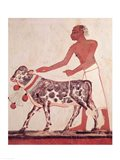 Peasant leading a cow to sacrifice Art Print