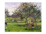 The Wheelbarrow, Orchard, c.1881 Art Print