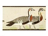 Geese, from the Tomb of Nefermaat and Atet, Old Kingdom Art Print