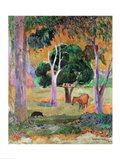 Dominican Landscape Art Print