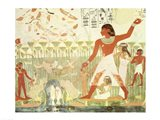 Hunting and Fishing, from the Tomb of Nakht Art Print