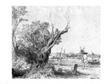 View of Omval, near Amsterdam, 1645 Art Print
