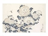 Bee and Chrysanthemums Art Print