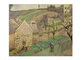 Hillside of the Hermitage, Pontoise, 1873 Art Print