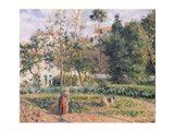 Vegetable Garden at the Hermitage, Pontoise, 1879 Art Print