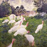 The Turkeys at the Chateau de Rottembourg, Montgeron, 1877 Art Print