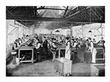 One of the cigar manufacturing departments at Messrs Salmon and Gluckstein's Ltd Art Print