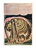 Book of Urizen; the creation of Urizen in material form by Los, 1794 Art Print