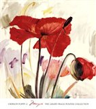 Crimson Poppy 2 Art Print