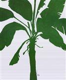 Silhouette Of Palm 2 Art Print