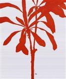 Silhouette Of Palm 3 Art Print