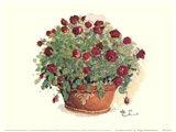 Red Rose Portrait Art Print
