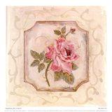 Rose In Season ll Art Print