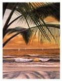 Paradiso Sunset Art Print