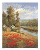 Poppy Vista I Art Print