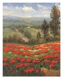 Poppy Vista II Art Print
