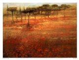 The Forest Afar Art Print