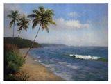 Palma De La Playa Art Print