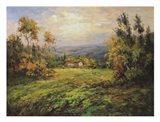 Green Grass at Home Art Print