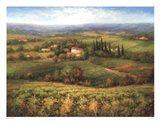 Villa d'Calabria Art Print