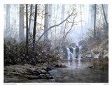 Transcending Forest Art Print