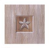 Beadboard Starfish Art Print