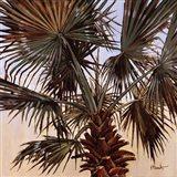 Solitary Palm Art Print