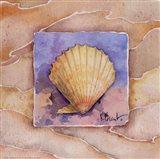 Summer Scallop Art Print