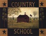 Country School Art Print