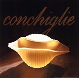 Conchiglie Art Print