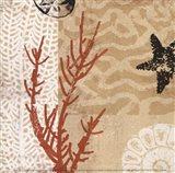 Coral Impressions I Art Print