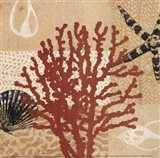 Coral Impressions III Art Print