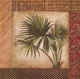 Palm Song III Art Print