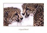 A Special Bond Art Print