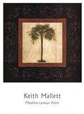 Mediterranean Palm Art Print