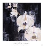 Shadow Orchids I Art Print