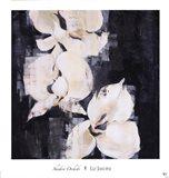 Shadow Orchids II Art Print