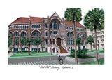 University of Texas Medical Art Print