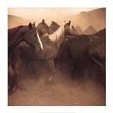Remuda, Spanish Ranch Art Print