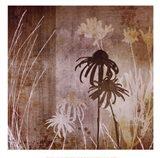 Floral A Art Print