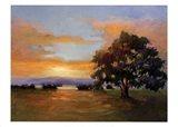 A Sunset Salute Art Print
