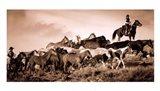 Gathering the Herd Art Print