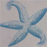 Sea Stars I Art Print