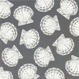 Scattered Shells II Art Print
